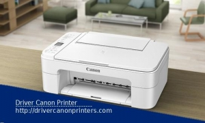 Driver Canon TS3140 Printer for Windows and Linux